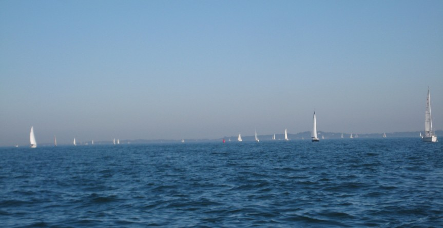 I don't think I've ever seen so many sailboats out at the same time, except for during a race.