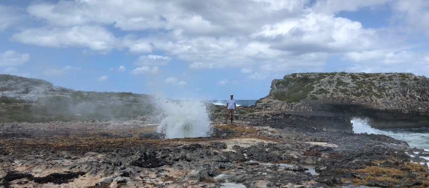 A return to Little Bay – and our first blowhole!